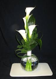 Calla Flower Best 25 Calla Lilies Ideas On Pinterest Calla Lillies Calla