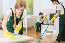 3 reasons why you should hire a professional cleaner cleaning