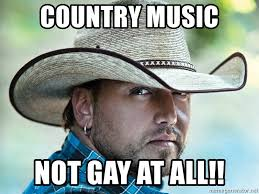 Country Music Memes - country music not gay at all jason aldean meme generator