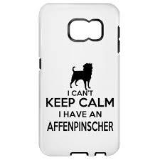 affenpinscher swimming 420 best affenpinscher puppy images on pinterest animals keep
