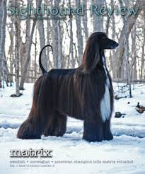afghan hound club of st louis sighthound review magazine sighthound review magazine back issues