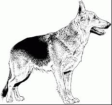 amazing printable dog coloring pages with dogs coloring pages