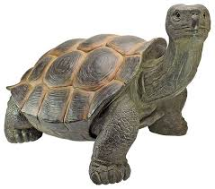 the cagey tortoise statue large contemporary garden statues