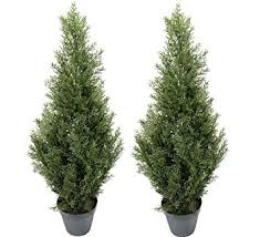 two pre potted 3 artificial cedar topiary outdoor