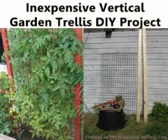 Diy Garden Trellis Ideas Inexpensive Vertical Garden Trellis Diy Project The Homestead