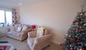 professional painting and decorating service fully insured