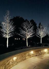 High Voltage Landscape Lighting High Quality Low Voltage Landscape Lighting Low Voltage Landscape