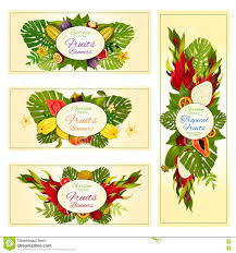 tropical and exotic fruit banners for food design stock vector