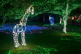 Zoo Lights In Houston by Zoo Lights