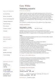 Executive CV template