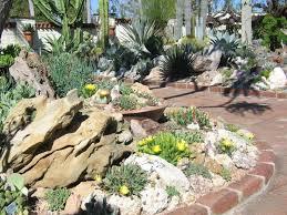 161 best succulent u0026 mediterranean gardening images on pinterest