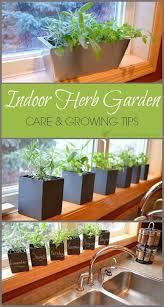 Indoor Herb Garden Ideas best 25 growing herbs indoors ideas on pinterest growing plants