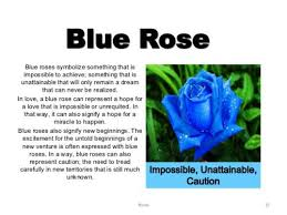 the 25 best blue rose tattoo meaning ideas on pinterest blue