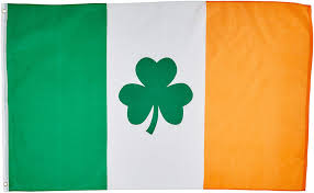 Green Day Flag Amazon Com 3 U0027x5 U0027 Irish Shamrock Flag Clover Saint Paddys Pattys