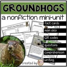 groundhog day cards 130 best groundhog day resources activities images on