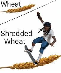 Shredding Meme - wheat shredded wheat dank meme on me me