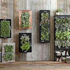 glamorous wall mounted indoor herb garden 83 in home decorating