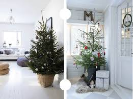 potted christmas tree the plumed nest pins of the week potted christmas tree