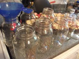 how to can homemade applesauce the organic canner