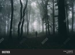 halloween spooky tree silhouette silhouette of man in dark scary forest with fog on halloween night