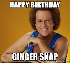 Ginger Snap Meme - happy birthday ginger snap gay richard simmons meme generator