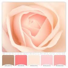 Pink Color Scheme 416 Best Great Color Combinations Images On Pinterest Colors