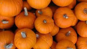 all events for thanksgiving celebration covert ottawa