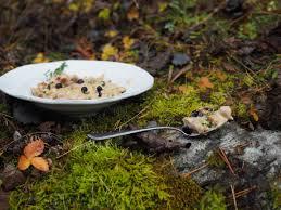 norwegian recipes north wild kitchennorth wild kitchen