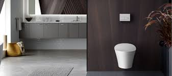 modern toilet one piece toilet 48 inch bathroom vanity without top