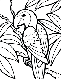 coloring book birds pictures angry movie pages nest