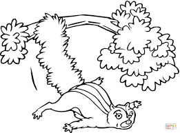 flying squirrel from the tree coloring page free printable
