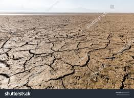 Floor Dry by Dry Lake Bed Natural Texture Cracked Stock Photo 360324089