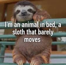 Sloth Whisper Meme - listen to enlightened sloth minimal meaningful life travel