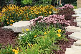 trees shrubs perennials and plant landscaping in appleton ornamental