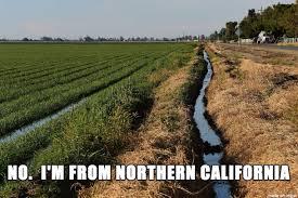 California Meme - i m from northern california meme on imgur