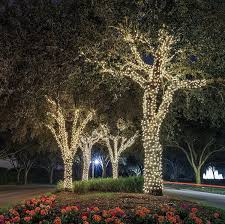 ora 100 led solar powered outdoor string lights bright white 55