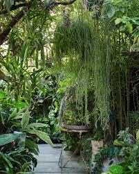 Hanging Plant Garden Design Garden Design With Popular Hanging Plant Outdoor