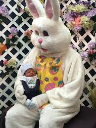 the story of the easter bunny the easter bunny visits here s the story bookstore union nj