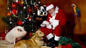 set of golden christmas tree bells youtube