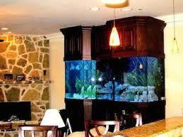 designer aquarium custom design glass aquariums das aquariums
