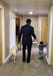 How Do Blind Dogs Know Where To Go Kika Kika Guidedog Twitter