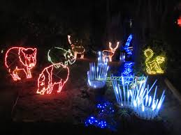 Zoo Lights Az by Family Through Adoption