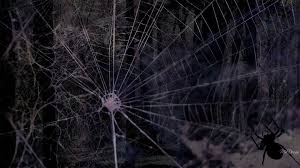 spooky wallpapers dark spooky wallpaper background 1920 x 1080 scary spider wallpaper wallpapersafari