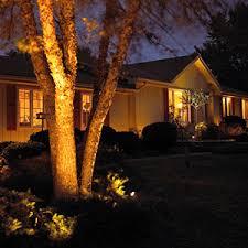 Landscape Lighting Trees Options For Landscaping Lights