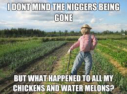 Funny Nigger Memes - have a laugh strawman misses his chickens and watermelons saboteur365