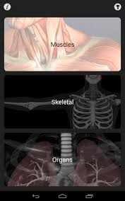 Human Anatomy Quizes Anatomy Quiz Pro Android Apps On Google Play