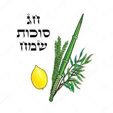 lulav and etrog for sale sukkot happy sukkot background hebrew translate happy sukkot