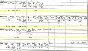 excel genealogy spreadsheet family tree natural buff dog