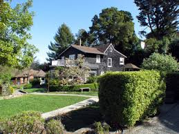christmas tree hill real estate agent in marin county ca