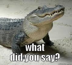 Crocodile Meme - crocodile tears steemit